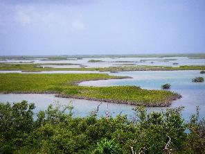 カリビアンの島々~遺跡~